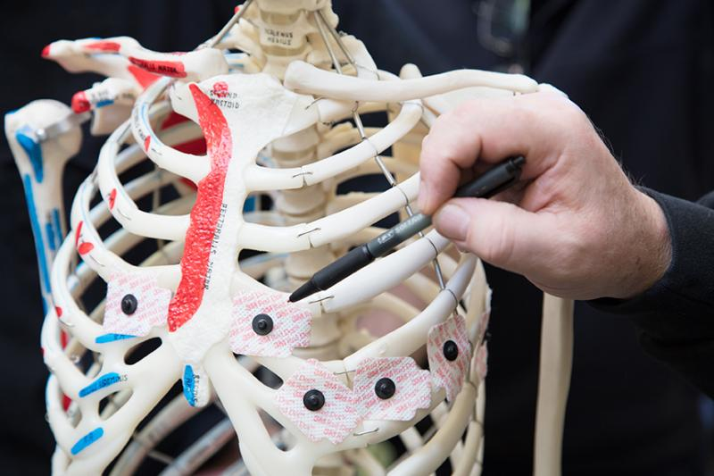 Human ribcage being studied in CWU lab